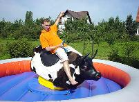 Mechanical Bull Rental for Colleges in Michigan, Ohio, Indiana
