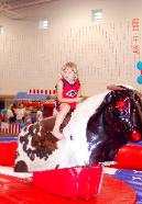 Mechanical Bull Rentals in MI, OH, IN, IL, IA, MO, PA, KY, TN, FL for School Field Days, Family Fun Days,  and Events