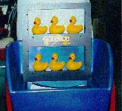 Quack Attack Carnival Game Michigan Rentals